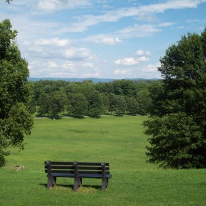 Galatin meadow bench