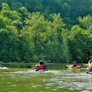 Best Places To Kayak Point Marion
