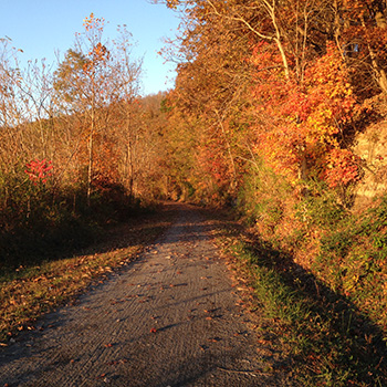 The Mon River Trail North on a Fall Day